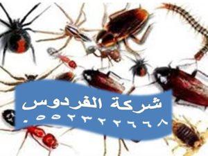 شركة مكافحة الحشرات الزاحفة بجدة