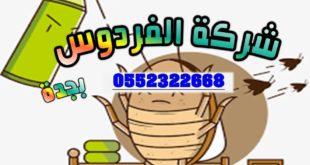 مكافحة حشرات في جدة