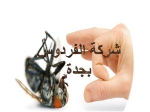 شركة الفردوس لرش الحشرات بجدة