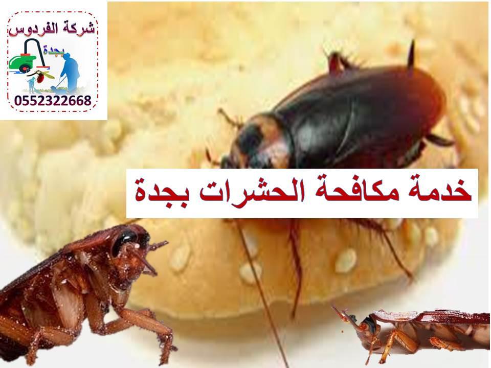 مكافحة الحشرات الفردوس