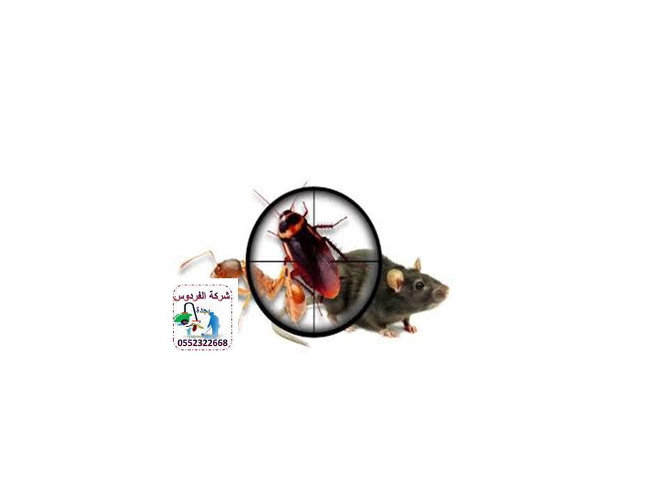 مكافحة الحشرات بجدة شركة الفردوس