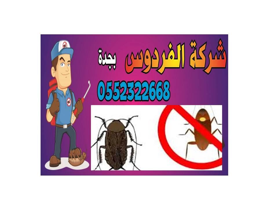 شركة مكافحة حشرات الفراش بجدة